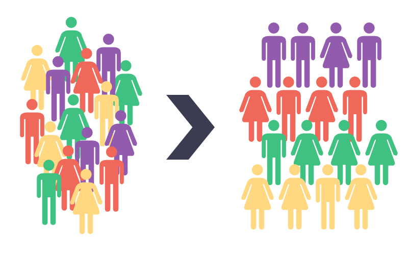 Using Audience Segmentation to Drive Success